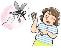 カンボジアでデング熱に気を付けて!! 安易に解熱鎮痛剤を飲むのは要注意