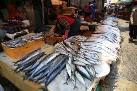 カンボジアで青魚アレルギー?実はヒスタミン中毒かも【現役医師が解説】