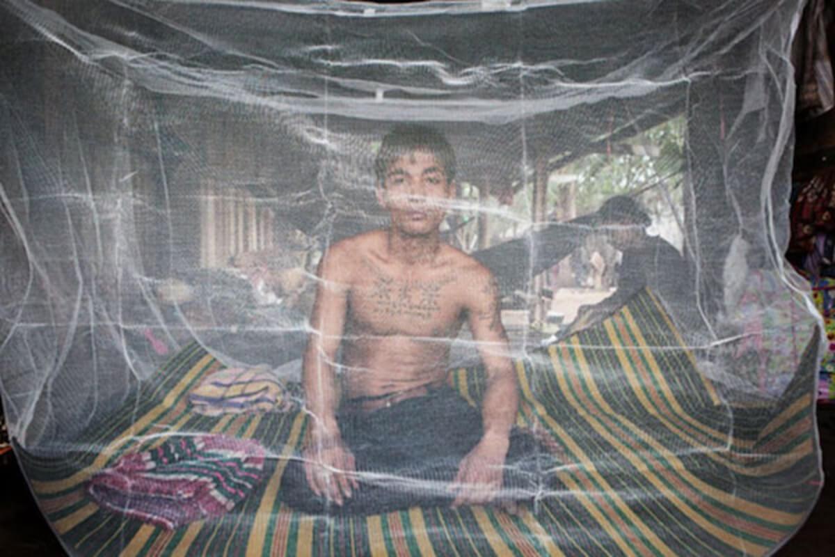 マラリアの感染症例が前年比 大幅減、歴史的にも低い水準に