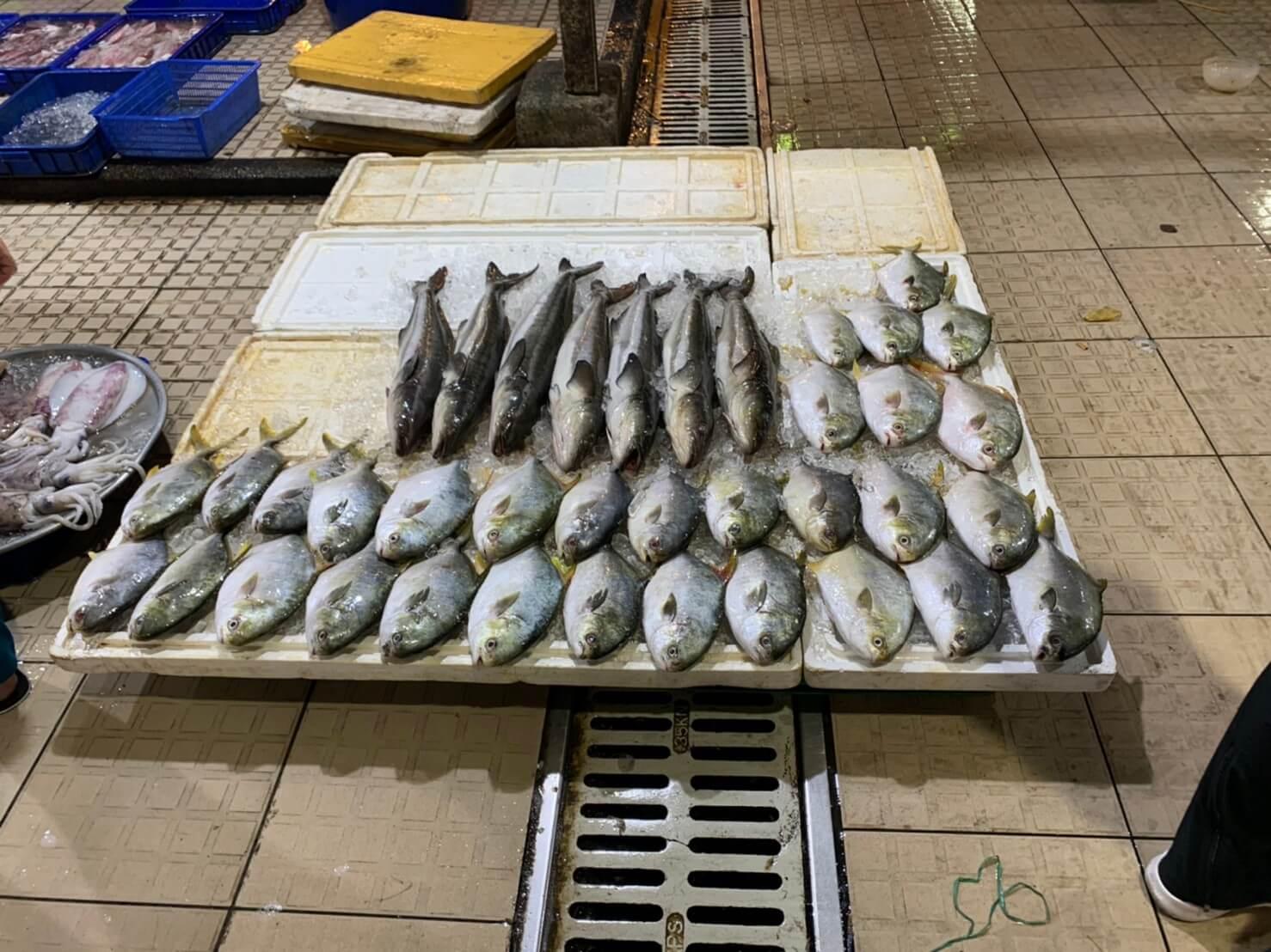 ビンディエン市場 鮮魚