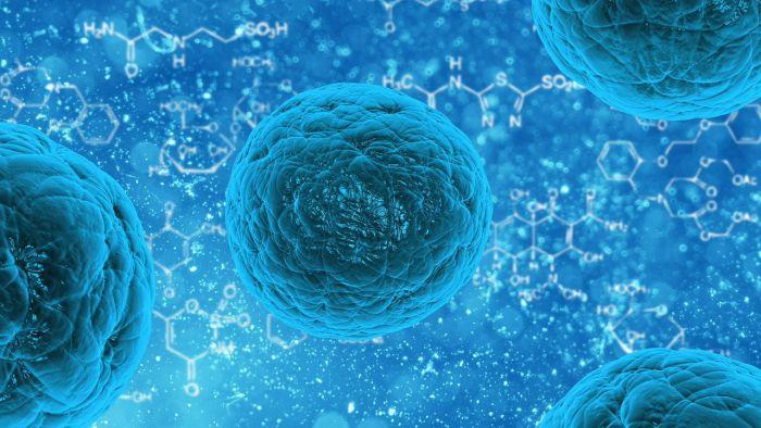 ホーチミンで流行している感染症について【ファミリーメディカルプラクティスからお知らせ】
