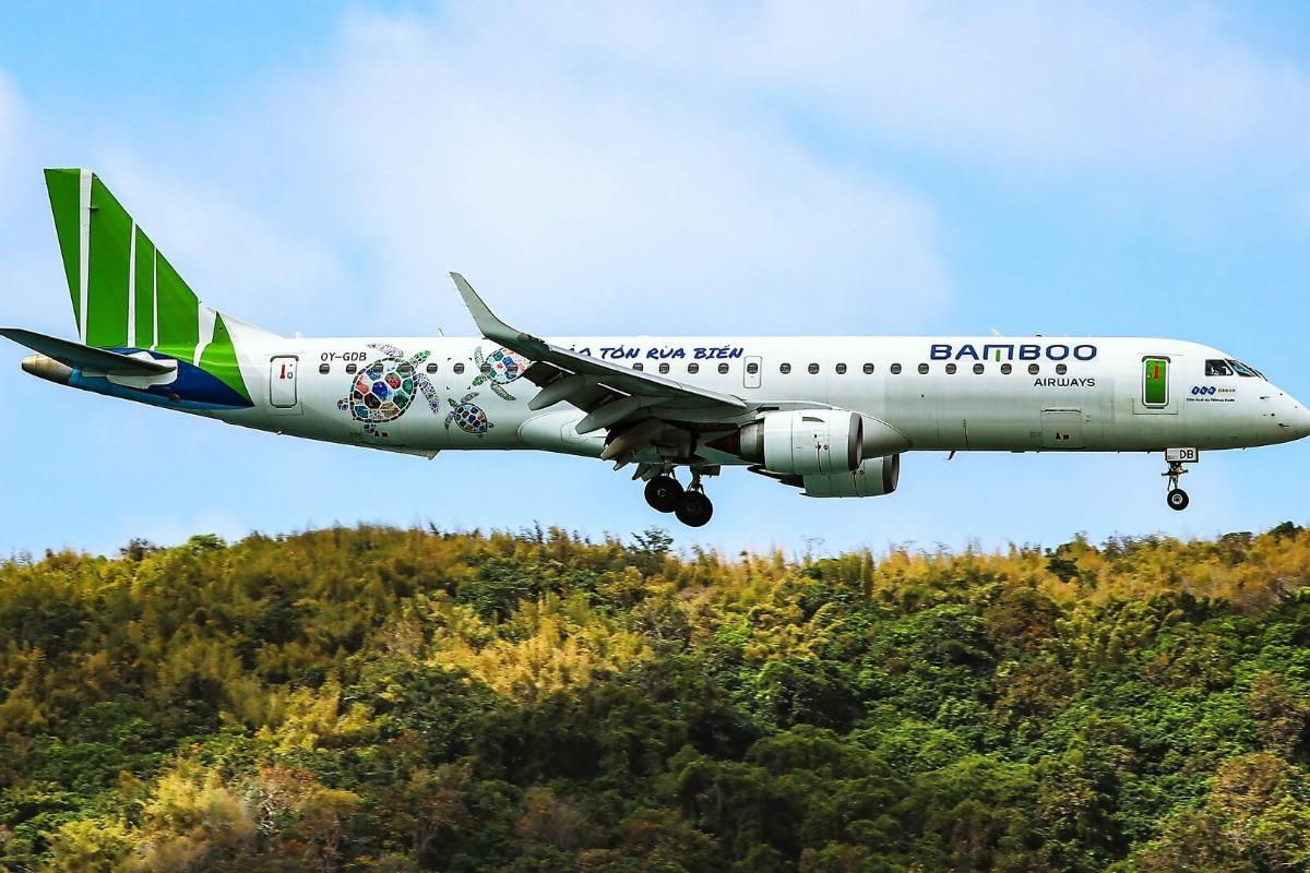 バンブー航空がハノイで緊急着陸、バードストライクで