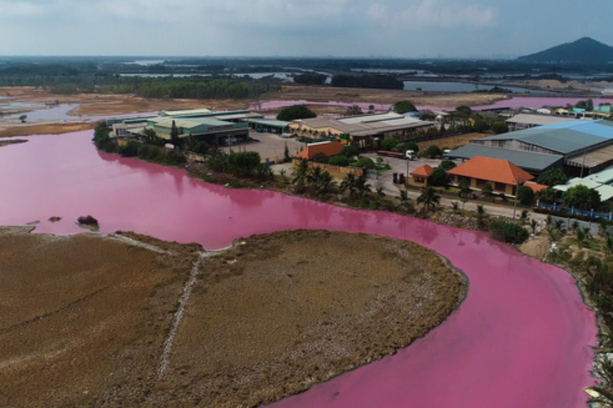バリア・ブンタウで貯水池がピンク色に、異臭放つ