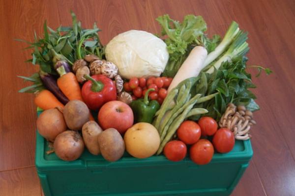しゅん,野菜,宅配,宅配野菜,お米,デリバリー
